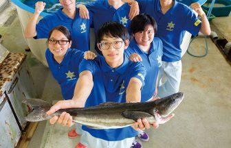 沖縄水産高等学校 海洋生物系列